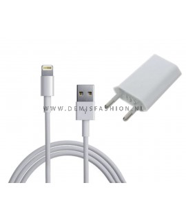 2 in 1 charger IPhone