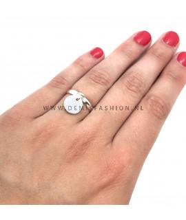 Zilverkleurige ring met munt bedel
