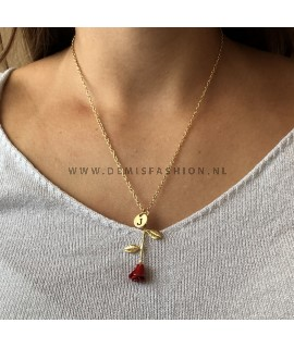 Rode roos ketting letter J
