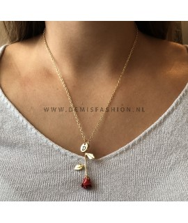 Rode roos ketting letter D