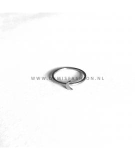 Zilverkleurige maan ring Dani