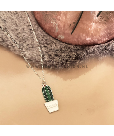 Cactus ketting wit potje