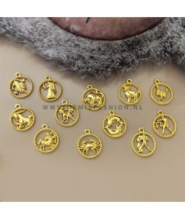 Sterrenbeeld ketting goudkleurig