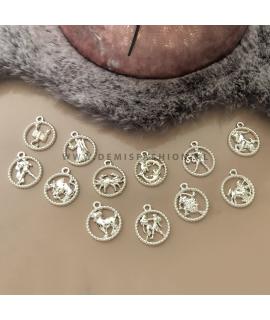 Sterrenbeeld ketting zilverkleurig